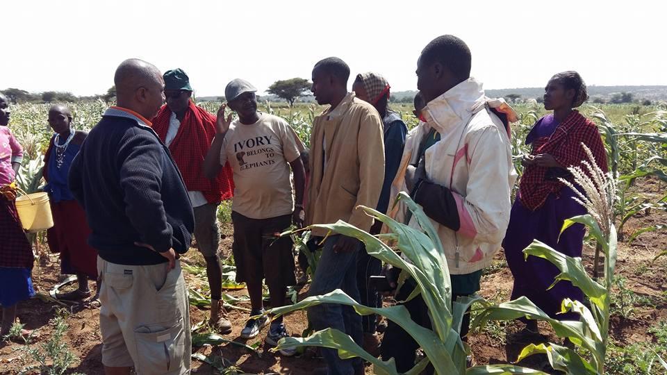 talking_to_farmers