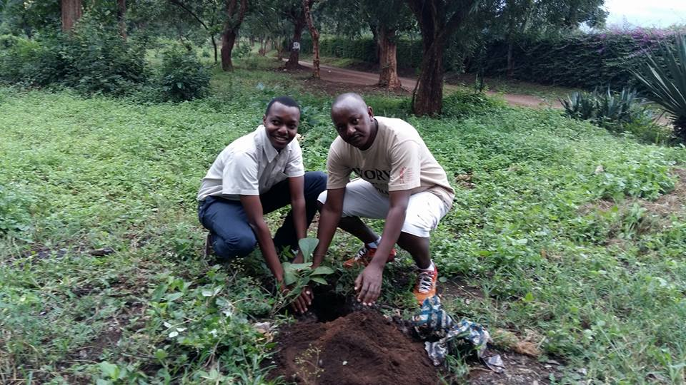 in moshi planting with supporter