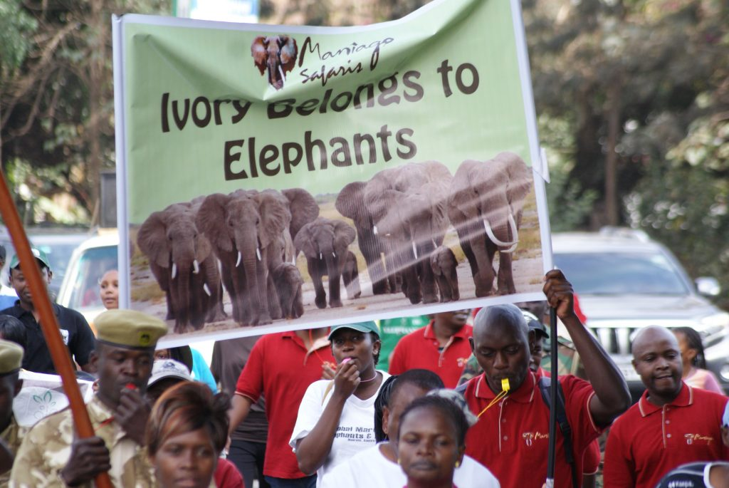 Maniago Safaris and their banner